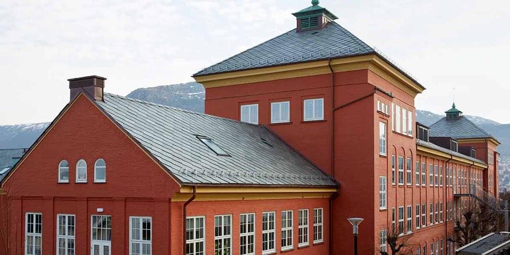 Altaskifer bergen ny-kronborg